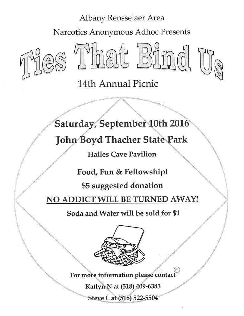 14th Annual Ties That Bind Us Picnic // ARANA @ Hailes Thacher Pavillion | Voorheesville | New York | United States